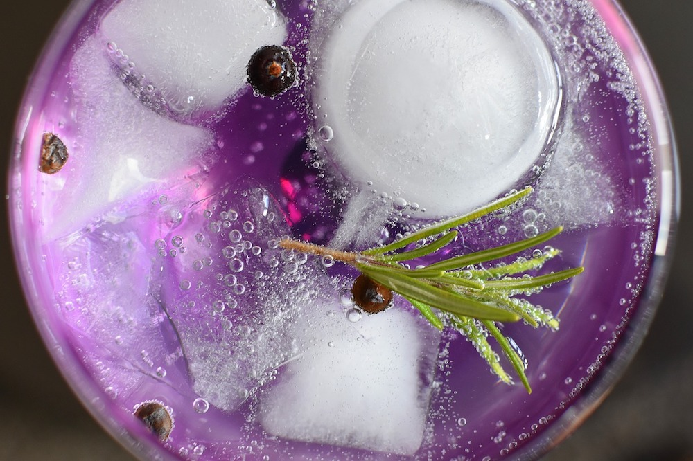 gin tonic ice cubes and rosemary