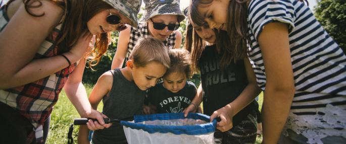group of children looking in a fishing net pond-dipping