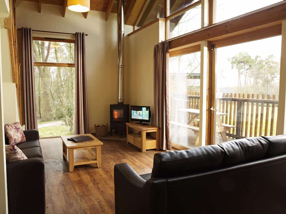interior of a log cabin living room with wooden floors and log burner