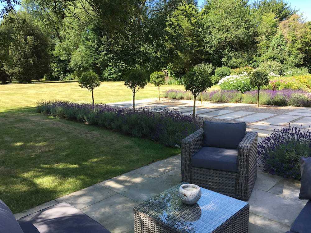 lavender path and garden furniture