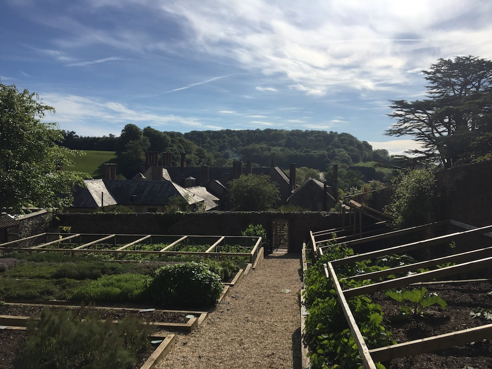 Kitchen gardens with countryside in the distance