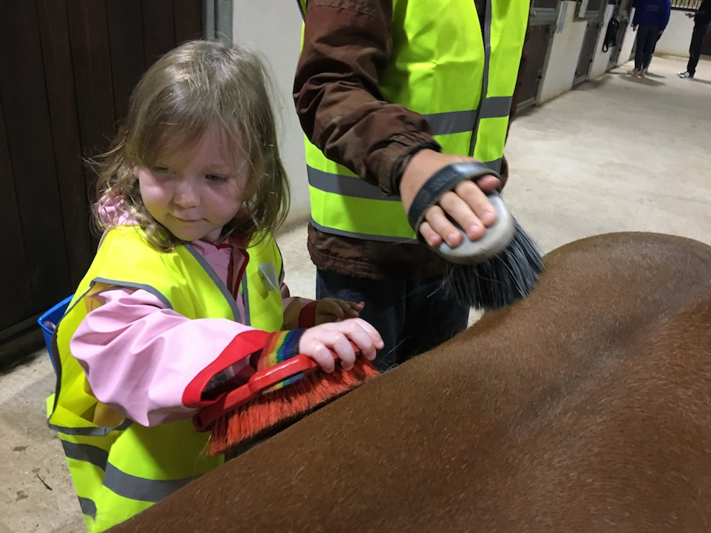 little girl brushing a pony