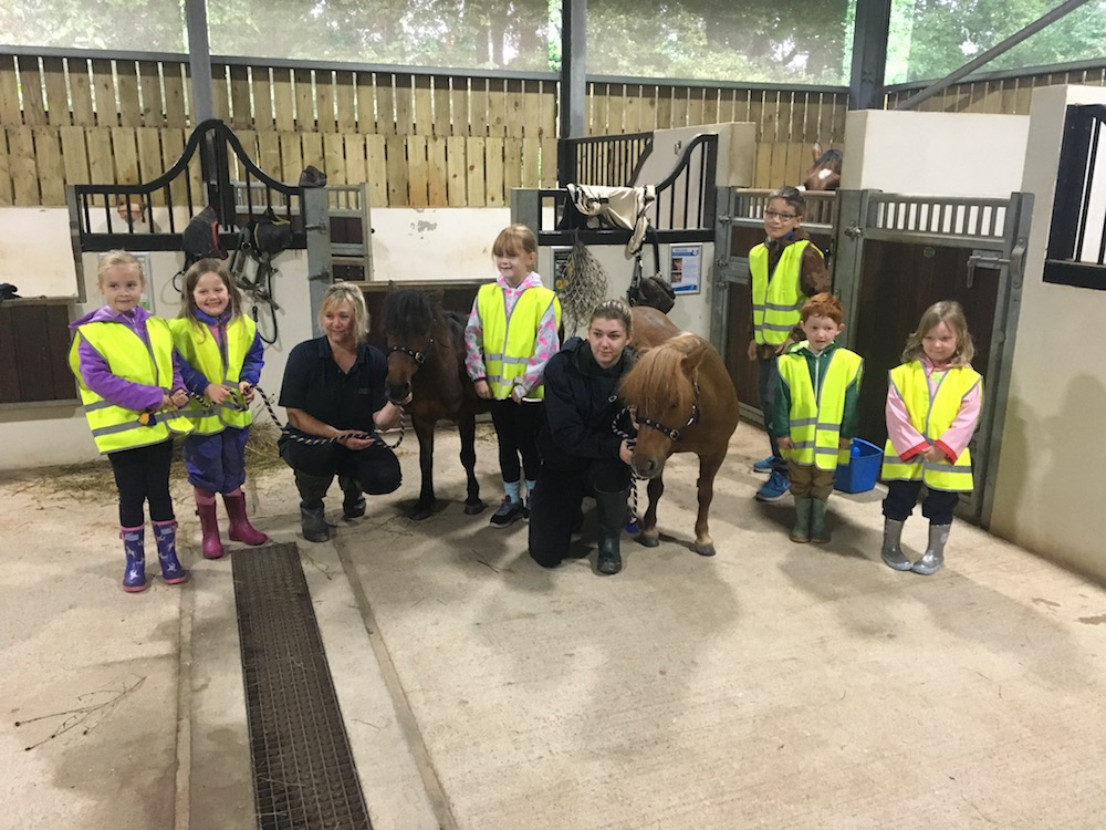 group shot of young children and teachers with ponies