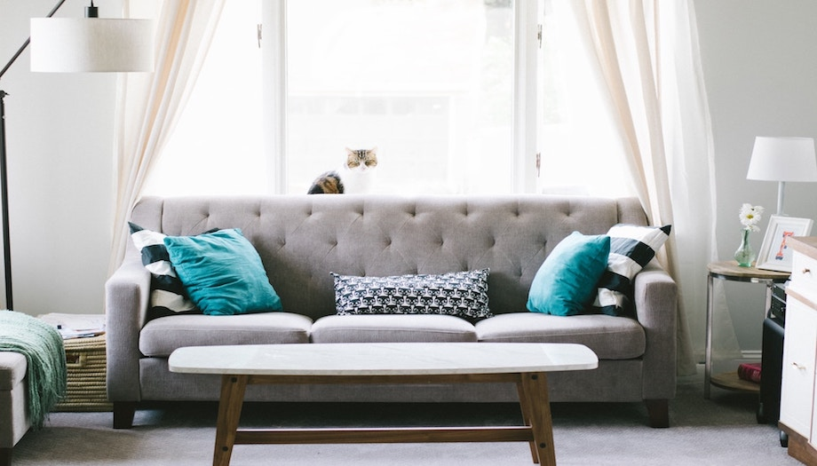 sofa in living room with blue cushions