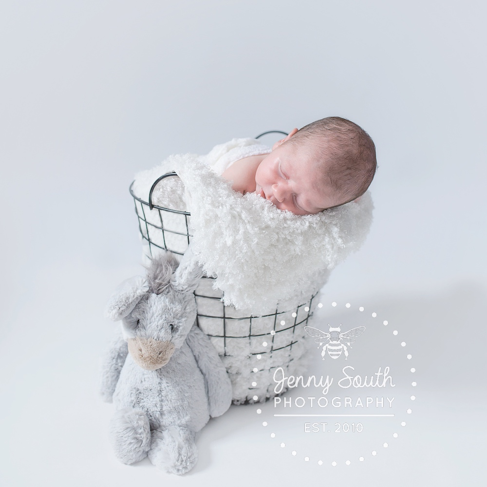 baby in a basket with rabbit teddy