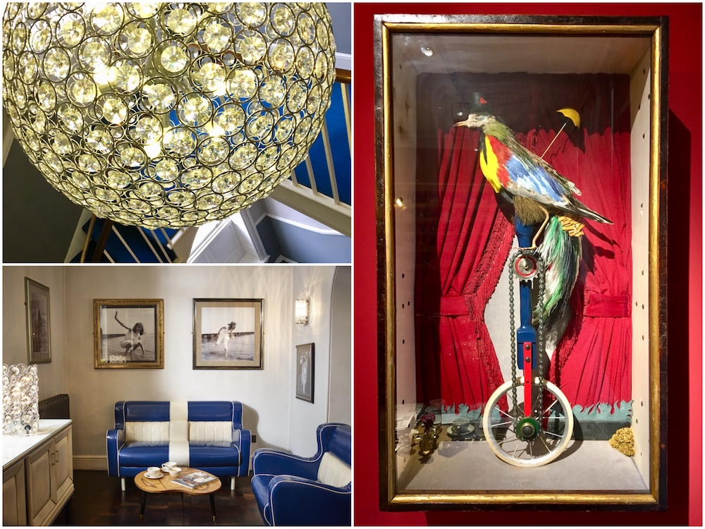 chandelier blue leather sofas parrot on a unicycle