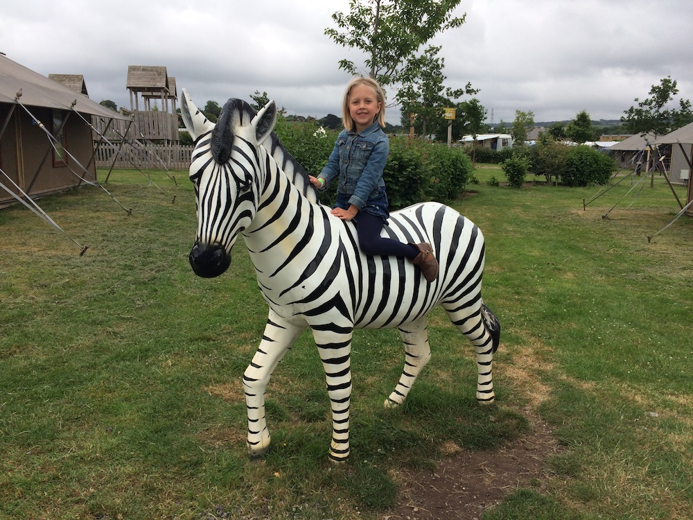girl on a zebra