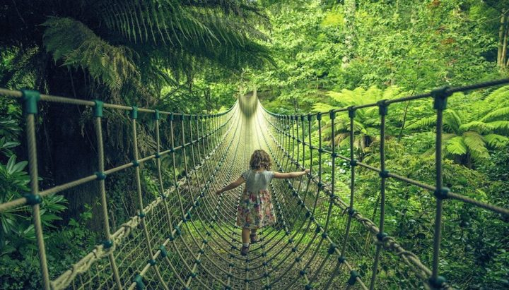 girl crossing rope bridge in forest
