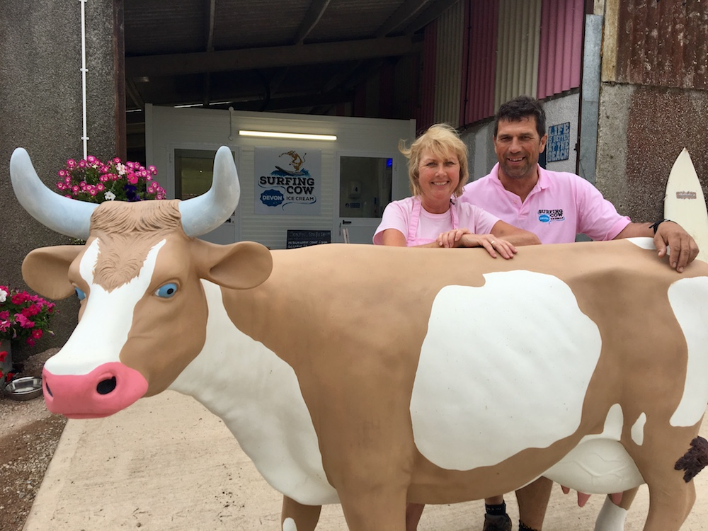 couple wearing pink t shirts with cow