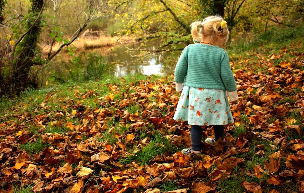 child playing in autumnal leaves
