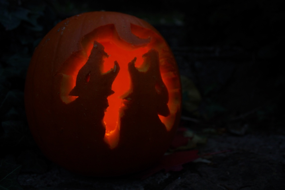 pumpkin with wolves