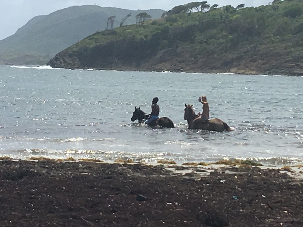 girls riding horse in water