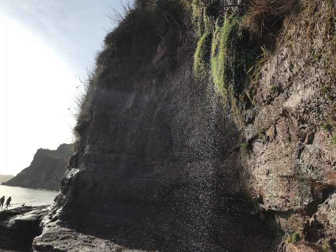 beach and cliffs at Ness Cove, Shaldon